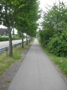 Über diesen Weg könnte eine Zufahrt zu einem Ausweichs-/Behelfsparkplatz führen.